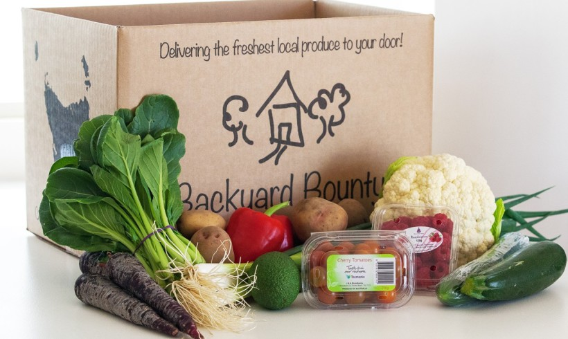Backyard Bounty all-Tasmanian Vegie box: 8th April