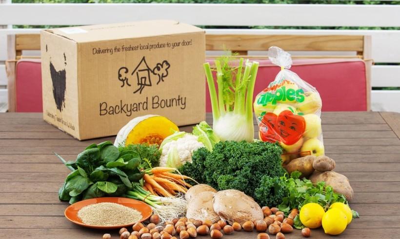Backyard Bounty all-Tasmanian Vegie box: 10th June
