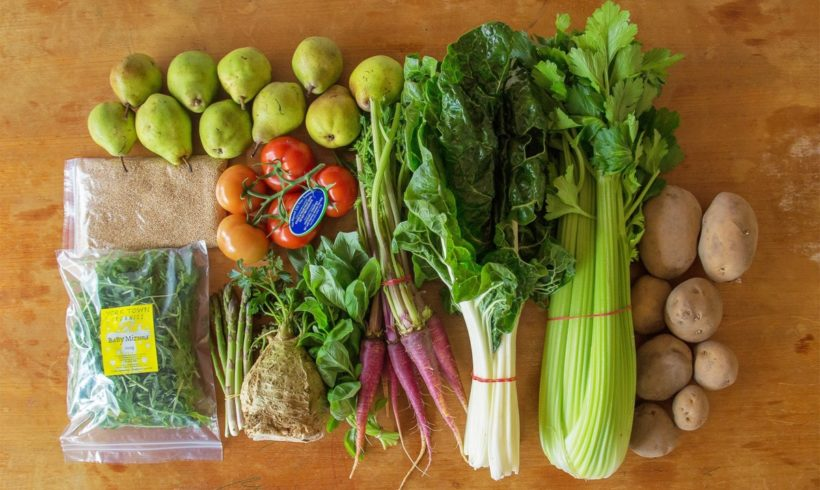 Backyard Bounty all-Tasmanian Vegie box: 30th September