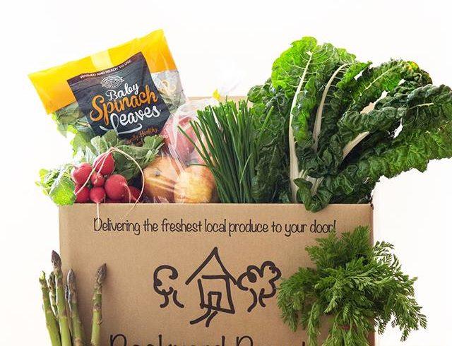 Backyard Bounty all-Tasmanian Vegie box: 28th October