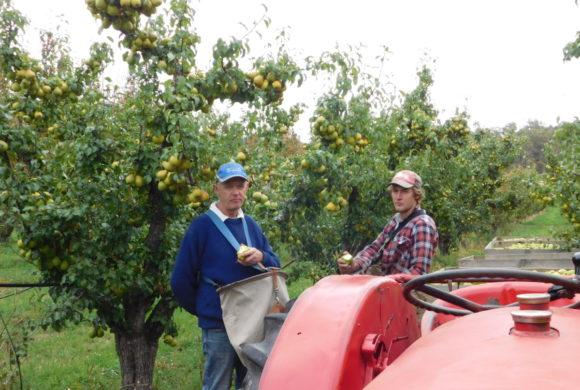 OE Hansen & Son – Scott and Thomas