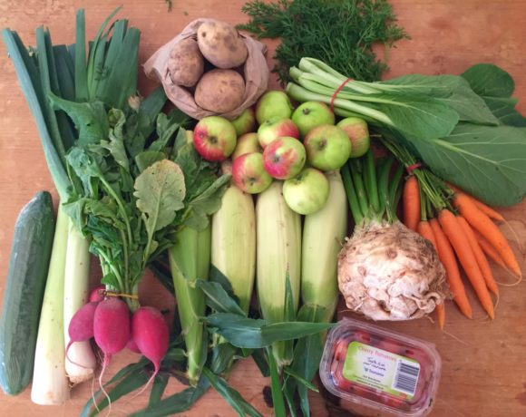 Orders for our all-Tasmanian fruit and veg boxes are now open for March