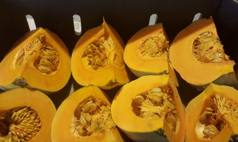 Hunger Gap Games 2018: celebrating the pumpkin