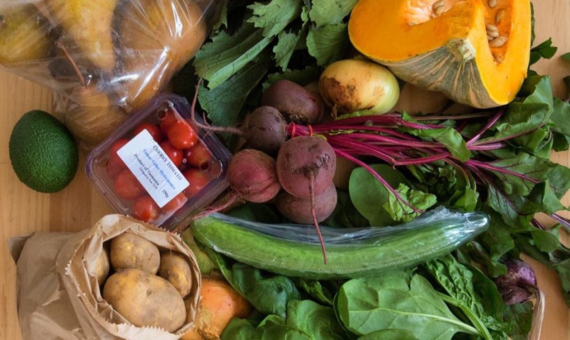 Backyard Bounty all-Tasmanian Vegie box: 18th March
