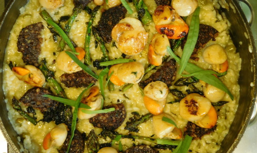 Asparagus risotto with black pudding and scallops