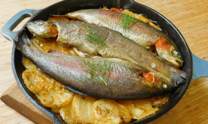 Quick potato, dill and tomato boulangere with rainbow trout