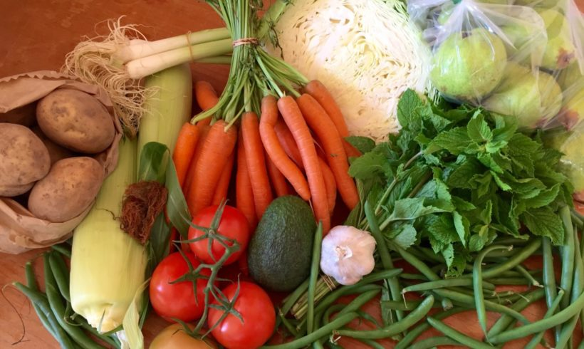 Orders for our March all-Tasmanian produce boxes are now open!