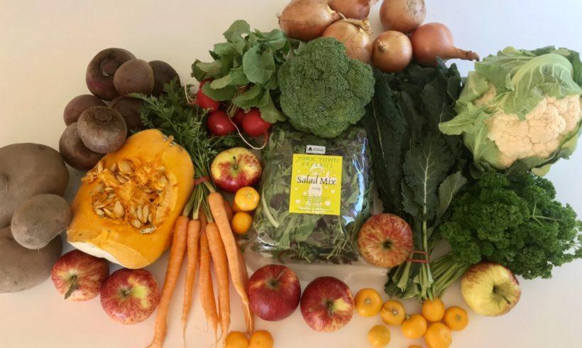 Backyard Bounty all-Tasmanian Vegie box: 7th September