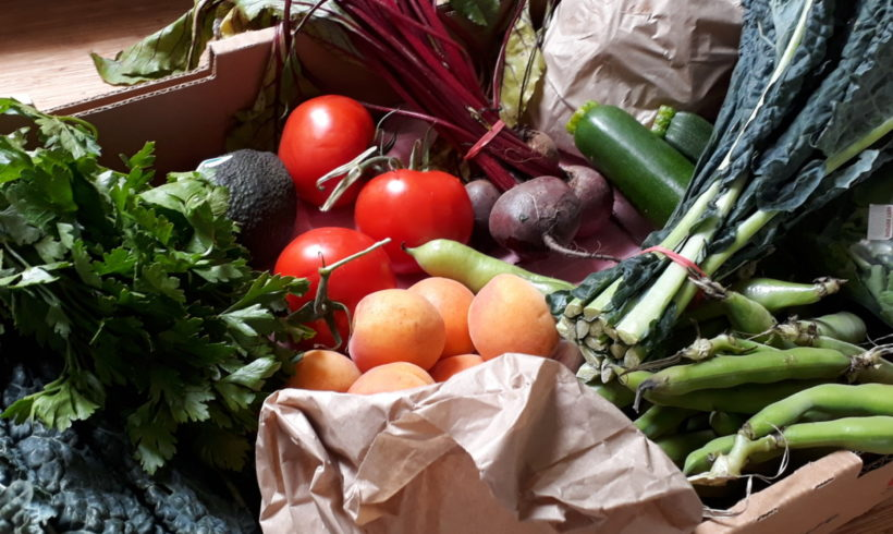 Orders for our all-Tasmanian fruit and veg boxes are now open for January