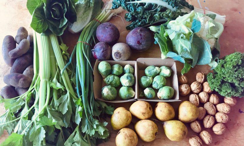 Backyard Bounty all-Tasmanian Vegie box: 26th July