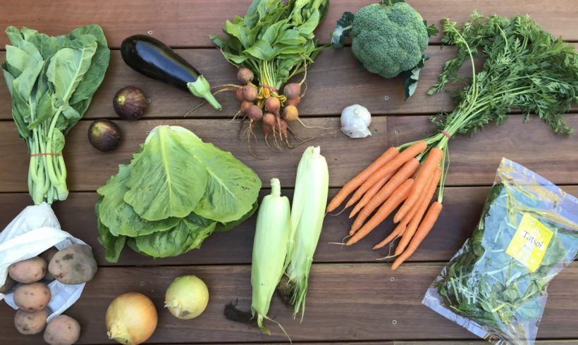 Backyard Bounty all-Tasmanian Vegie box: 9th April