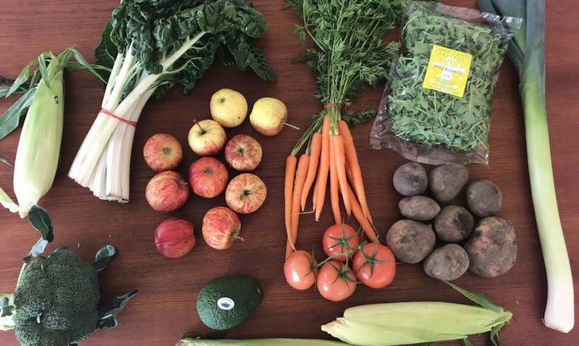 Backyard Bounty all-Tasmanian Vegie box: 17th April