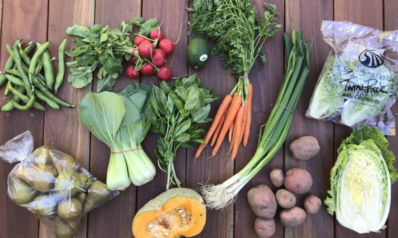 Backyard Bounty all-Tasmanian Vegie box: 1st May