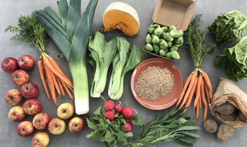 Backyard Bounty all-Tasmanian Vegie box: 28th August